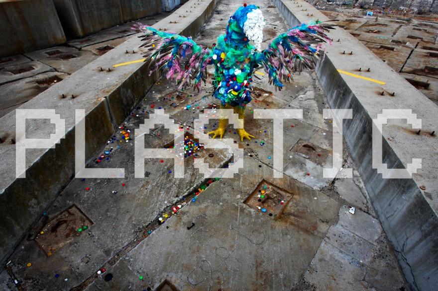 Cape Mongo (Plastic) - photo by anton scholtz