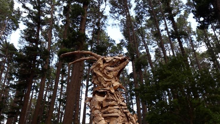 treesSS