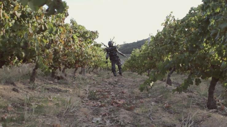 vineyardSS